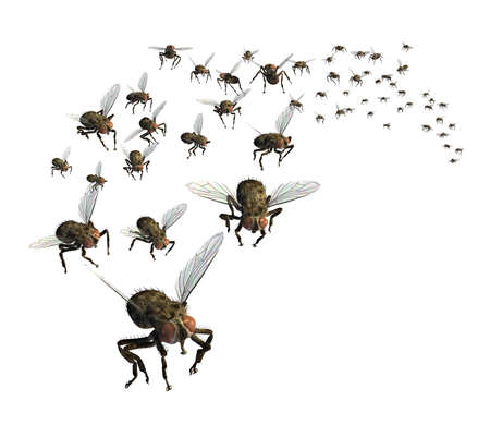 exterminate: 3D render of a swarm of flies - theyre headed your way!