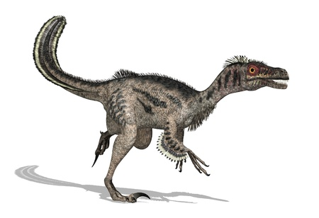 feathered: The velociraptor was a feathered dinosaur that lived during the later Cretaceous Period - 3D render. Stock Photo