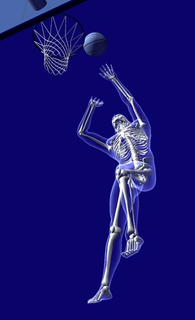 x sport: Basketball anatomy from below - 3d render.