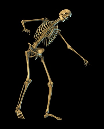 3D render of a skeleton laughing and pointing - on black. Stock Photo - 11563088