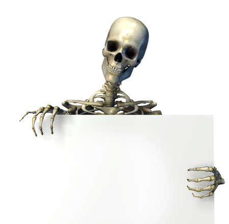 scheletro umano: Skeleton tenendo il bordo di un segno in bianco - render 3D