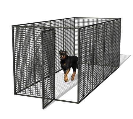 Rottweiler dog in kennel - 3D render photo