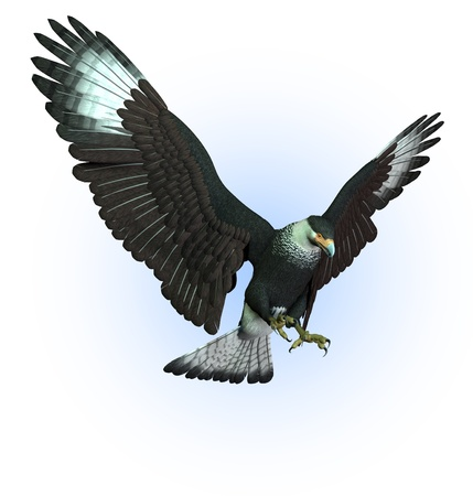 prey: CaraCara Vulture Swooping Down - 3D render Stock Photo