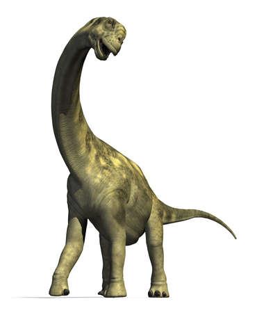 dinosaurio: El dinosaurio Camarasaurus vivió en América del Norte durante el periodo Jurásico tardío - 3D render. Foto de archivo