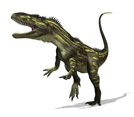 dinosauro: Il dinosauro torvosaurus visse durante il tardo periodo Giurassico - render 3D