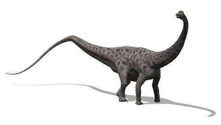 The diplodocus dinosaur lived in North America at the end of the Jurassic period - 3D render  photo