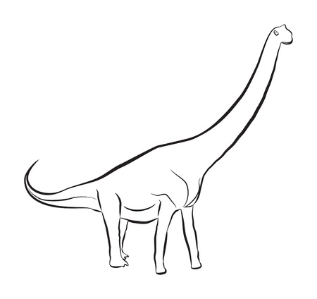 long lived: The Sauroposeidon dinosaur lived during the early Cretaceous period  This dinosaur was huge, it was around 112 feet long and weighed 55-66 tons  Illustration