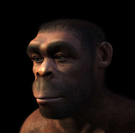 human evolution: Portrait of a male Homo Erectus, a prehistoric ancestor of humans that lived around 1 8 million years ago - 3D render with digital painting