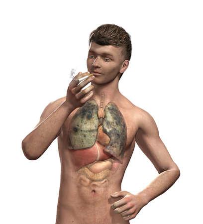 carcinogen: Un hombre fuma un cigarrillo, sin darse cuenta de lo que est� haciendo a sus pulmones - render 3D con pintura digital. Foto de archivo