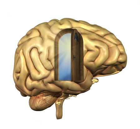 Brain with an open door, keeping an open mind. 3D renders and digital painting. Stock Photo - 21383789