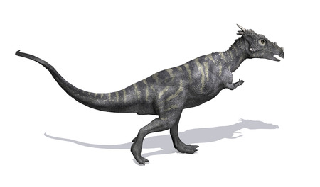 lived: The Dracorex dinosaur lived in North America during the Late Cretaceous period - 3D render. Stock Photo