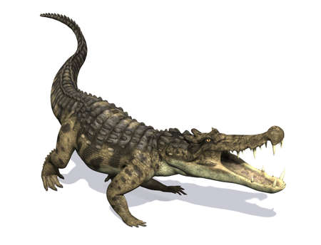 lived: The Kaprosuchus (Greek for Boar Crocodile) was a prehistoric crocodile that lived during the Cretaceous Period. Stock Photo