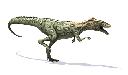 lived: The Masiakasaurus was a small dinosaur that lived during the Cretaceous period - 3d render. Stock Photo