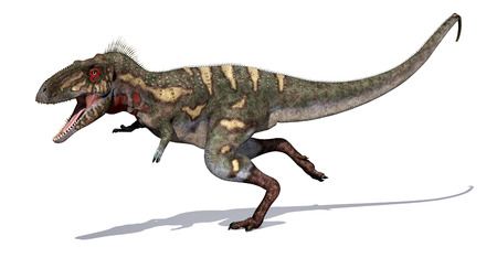 cretaceous: The Nanotyrannus dinosaur is a close relative of the Tyrannosaurus Rex; it lived during the Cretaceous Period - 3d render. Stock Photo