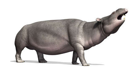 related: The Moeritherium is a prehistoric mammal that is related to the elephant; it lived 30 - 37 million years ago - 3d render.