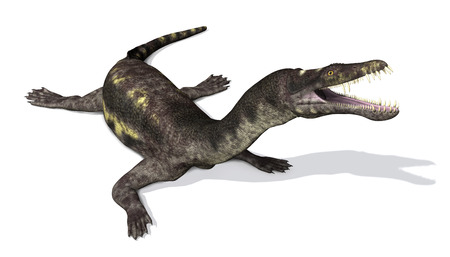 triassic: The Nothosaurus was prehistoric semi-oceanic reptile that lived during the Triassic Period - 3d render.
