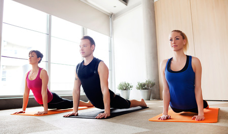 woman pose: Young people holding up dog pose in a yoga class