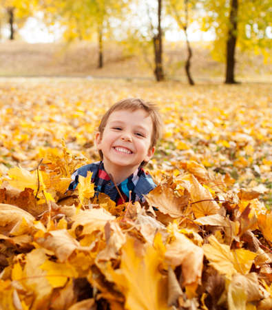 child smile: Image of beautiful boy in the pile of autumn leaves, shallow depth of field Stock Photo