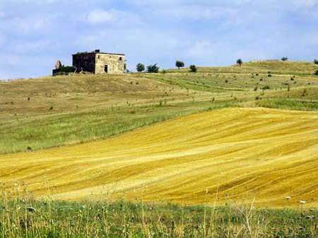 Summer landscape Stock Photo - 272738