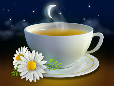 camomiles macro: Chamomile cup with some flowers and a night background. Digital illustration.
