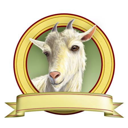 queso de cabra: Ilustración Cabra adecuado para las etiquetas alimentarias. Ilustración digital.