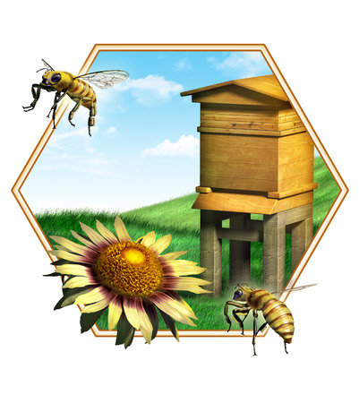 beehive: Nice composition of some bees, a flower and an hive. Suitable for food labels. Digital illustration.
