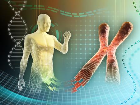 cromosoma: Figura masculina creado por algunos cromosoma humano. Ilustración digital.