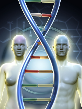 sex chromosomes: Male and female human figures linked by a dna chain. Digital illustration. Stock Photo
