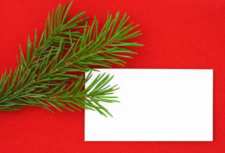 Christmas postcard with pine tree. Red background. 4 photo