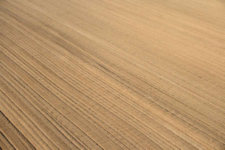 fertile land: Soil background. Ploughed land ready for cultivation.
