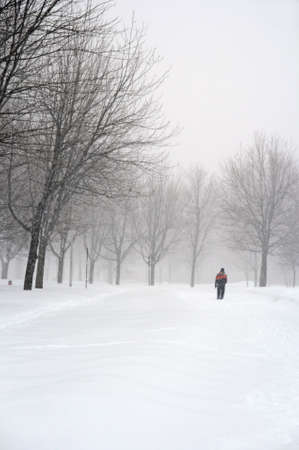 Man walking in a snowy park during a snowfall. photo