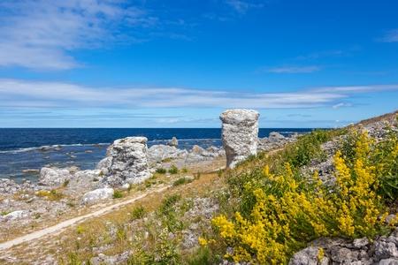 Nordic nature of F�r� island  Gotland, Sweden   Limestone formations  raukar  on the coastline  photo