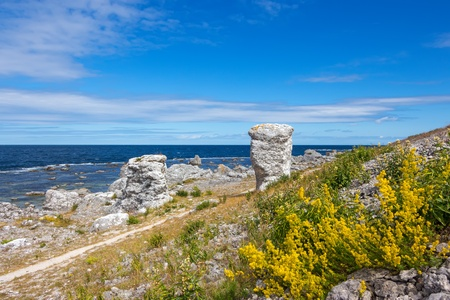 Nordic nature of F�r� island  Gotland, Sweden   Limestone formations  raukar  on the coastline  photo