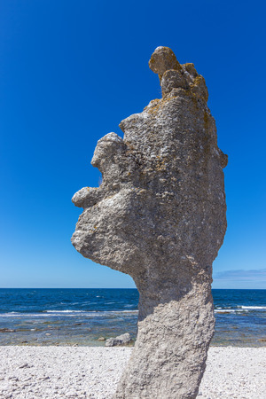 Limestone formation  rauk  on  island in Gotland, Sweden  Baltic Sea coastline  photo