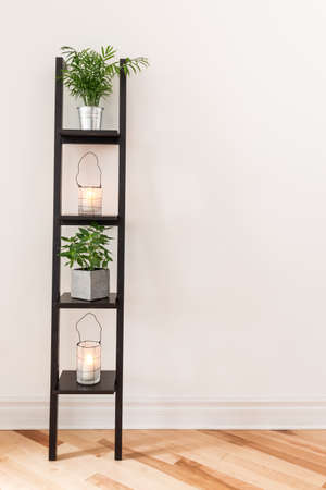 room for text: Shelf with plants and lanterns decorating a living room
