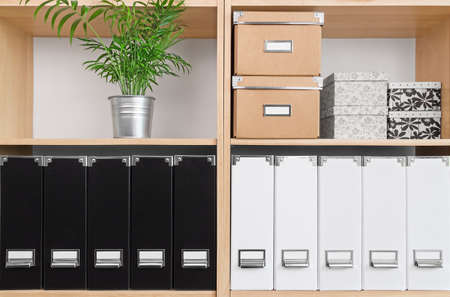 Shelves with storage boxes, black and white folders, and green plant.