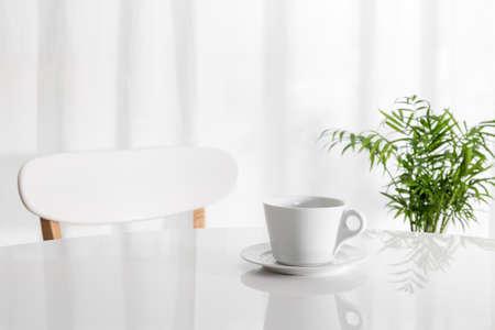 tabulka: Bílý šálek na kuchyňském stole, s zelených rostlin v pozadí.
