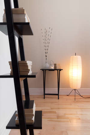 floor lamp: Room with contemporary decor, floor lamp and bookshelf