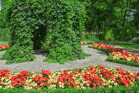 ornamental garden: Ornamental garden with blooming red and yellow begonias  Stock Photo