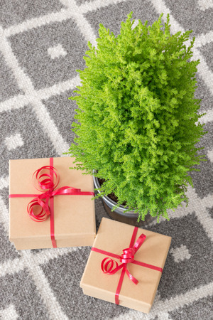 simple: Simple elegant presents near little Christmas tree  Stock Photo