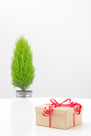 Elegant gift box with red ribbon, and little green tree in the background  photo