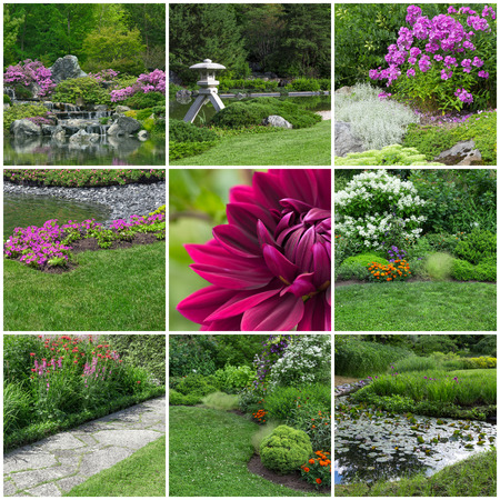jardines con flores: Hermosa flor de verano jardines Colección de 9 imágenes Foto de archivo