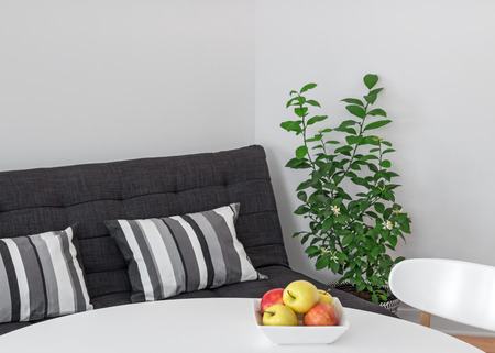 futon: Room with round table, sofa and green lemon tree