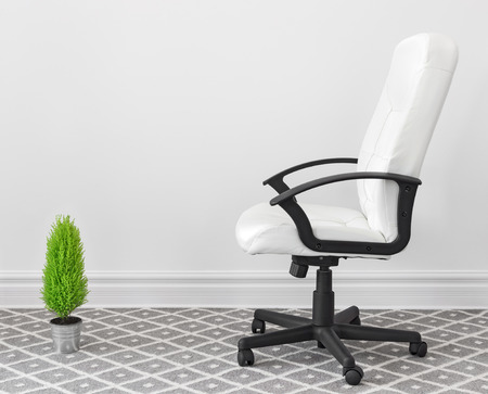 Computer chair and green plant at home or in the office  photo