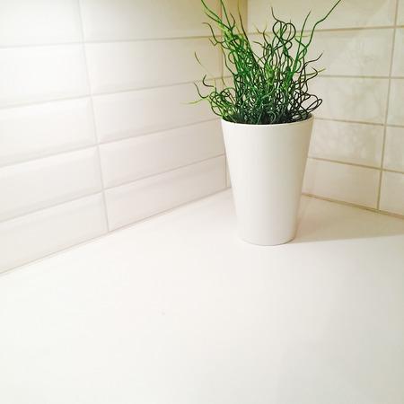 Plant in elegant vase decorating kitchen corner  photo