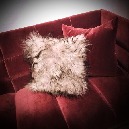 red sofa: Fluffy cushion on a luxurious red velvet sofa.