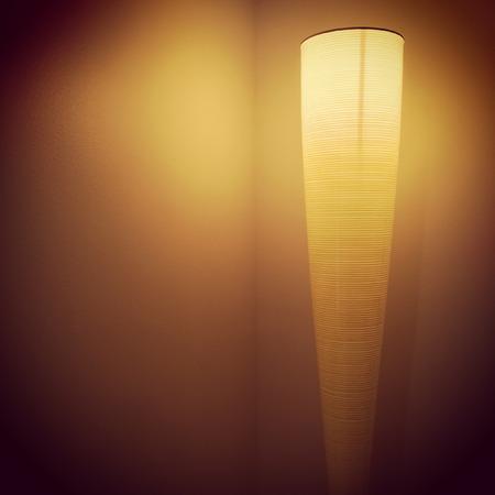 lamp shade: Modern lamp illuminating a dark room corner.