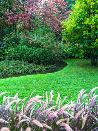 green landscape: Beautiful colorful garden with green lawn and decorative grass.