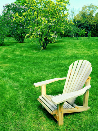 lawn chair: Wooden chair on a green lawn in spring garden.