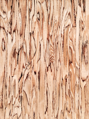 knotty: Beautiful wood background. Detail of a wooden wall.